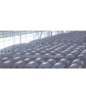 镀锌带钢热轧带钢 黑退带钢厂家就选胜兴制管厂