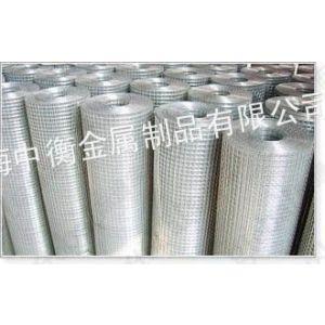 供应上海电焊网 电焊网 热镀锌电焊网 不锈钢电焊网