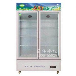 供应茶叶冰柜哪种款式好