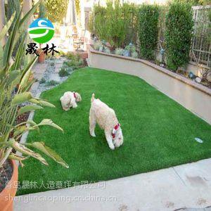 供应人造草坪宠物垫