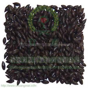 供应啤酒原料 黑麦芽 出口级黑麦芽 黑麦芽价格