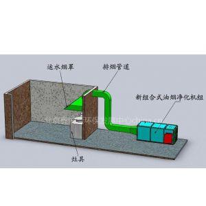 供应提供高性能的泉州莆田三明漳州的油烟净化器