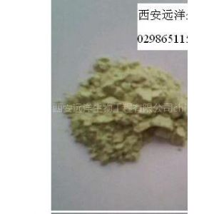 供应岩藻黄素、海带黄素、褐藻素、褐藻黄素、岩藻黄质