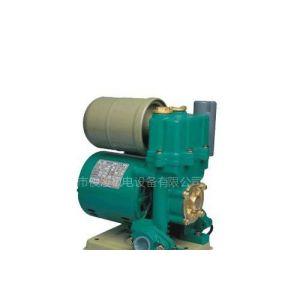 供应新界WZB-370(A)全自动冷热水旋涡自吸电泵(大球18688672155