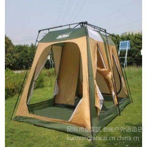 自动帐篷图片 多人露营自动帐篷 四季都可以使用的防雨帐篷 云南户外装备批发