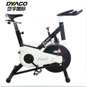 供应美国DYACO岱宇动感单车FS300家用健身车 进口健身车领导品牌