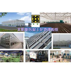 供应福航太阳能温室地热污泥处理设备13573470715