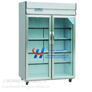 供应厂家直销专业制作玻璃门冷柜工程款双门玻璃门冷柜
