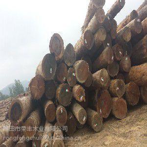 荣丰木业供应具有口碑的木方【火热畅销】
