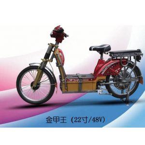 供应2012电动车散件、套件、整车代加工(金甲王)