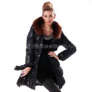 供应2010新款 波司登羽绒服 正品 亮面 女式青果领泡行线面包 BR1932