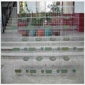 供应新型鸽笼制作|简便鸽笼组装