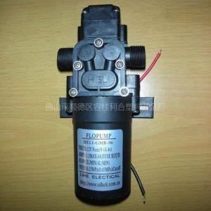 供应直流微型隔膜泵/隔膜泵/优质直流隔膜泵