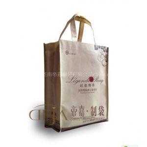 供应福建无纺布背心袋 福州环保包装袋厂家 泉州环保袋