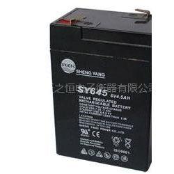 供应批发零售6V4.5AH电子秤专用电池