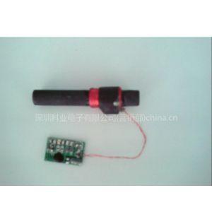 厂家直销德国电波钟模块DCF-8*50mm