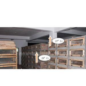 供应广西养蛇保温系统,广西无冬眠养蛇技术