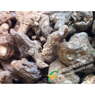 黄精 鸡头参 晒制 原药材批发 甘肃产地直收 成都中草药材市场