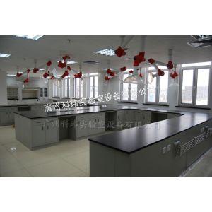供应实验室家具厂家 全钢结构中央实验台 实验室设备