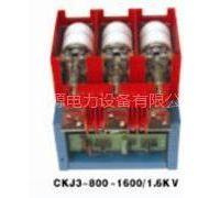 供应西安亿能森源CKG3高压真空接触器