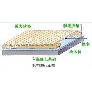 供应承建东营室内运动木地板