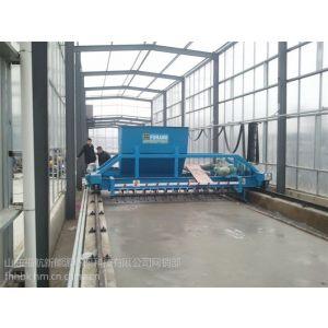 供应福航太阳能污泥干化设备