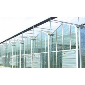供应供应文洛式玻璃温室,温室餐厅,温室大棚