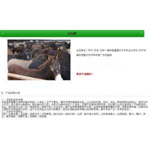 供应我想养肉驴|乌头驴|三汾驴|山东正规养牛场有哪家|良种肉驴繁育场