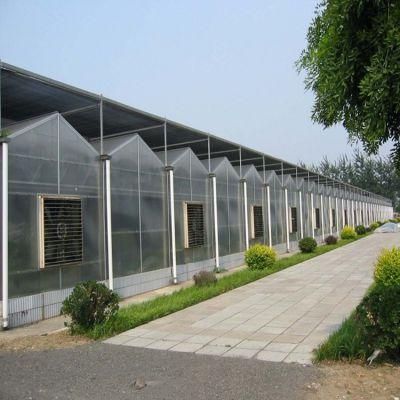 供应种植大棚 养殖大棚 生态餐厅 观光大棚 各种大棚的设计 生产 安装【特价】