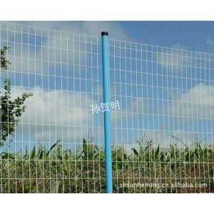 厂家供应PVC电焊网 荷兰网 波浪网 铁丝网
