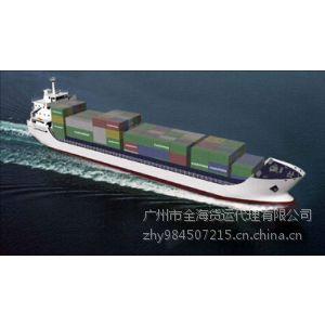 供应湛江到烟台海运价格/湛江到烟台海运公司