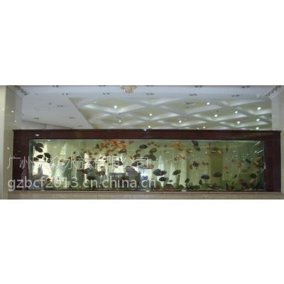 广州哪里可以订做办公室鱼缸广州商务中心观赏鱼缸广州商业写字楼鱼缸订做广州专业生产鱼缸鱼缸供应商鱼缸厂
