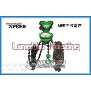 供应日本二叶环链手拉葫芦,SPEED-AH型手拉葫芦报价,龙海