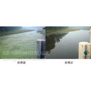供应河湖浮萍暴发生物修复治理技术