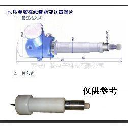 供应西安现货供应水质在线氯离子检测仪厂家
