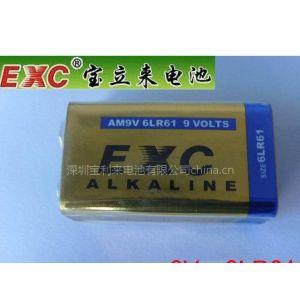 万用表专用碱性 干电池6LR61 9V
