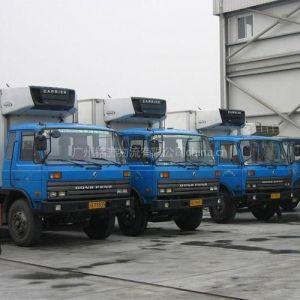 供应广州至全国各地月饼运输