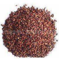 供应葡萄籽提取物原花青素
