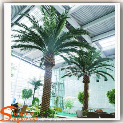 直销高质量加拿利海藻树 玻璃钢海枣树 室外造景仿真树