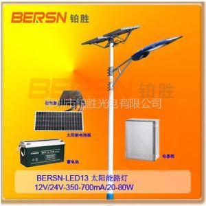 供应全国低价厂家热卖飞利浦芯片太阳能LED路灯12V/20W二年质保
