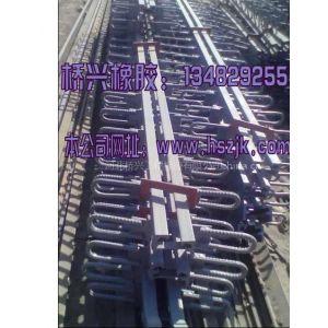 供应桥梁伸缩缝 钢型伸缩缝等各式伸缩缝衡水桥兴供应