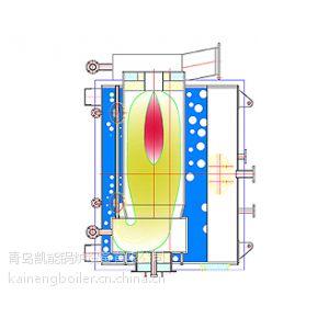 供应ZWY型卧式螺纹管锅炉