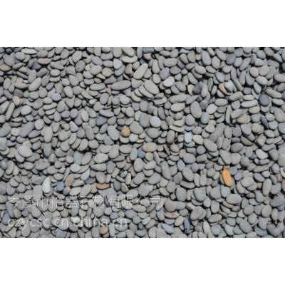 供应纯天然河卵石 鹅卵石 自由石 园林道路步行街广场铺地石