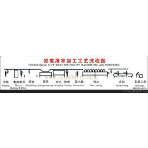 供应屠宰场设备-屠宰机械-屠宰设备-屠宰流水线-家禽屠宰加工工艺流程图