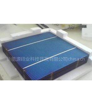 供应台州硅片回收多少钱一斤-衢州碎裸片回收-温州碎电池片回收