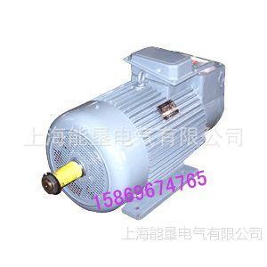 供应YZR200L-6起重及冶金用电动机 电机