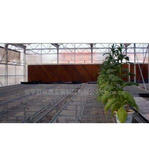 供应温室苗床网、温室育苗网、大棚花架网