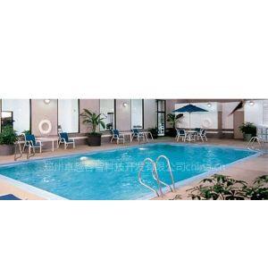 供应游泳池水处理系统/泳池水处理设备