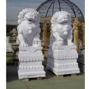 供应石狮子、石雕狮子、汉白玉狮子、古代狮子、欧式真狮子、现代狮子