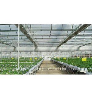 广东供应固得利阳光板 蔬菜大棚板材 PC材料 质保十年